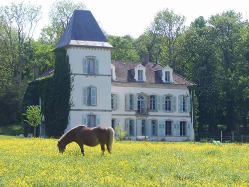 verkauf schloss chateau landsitz bei besancon nahe