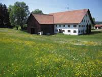 Verkauf Bauernhöfe, Reiterhöfe, Jagden, Wälder, landwirtschaftliche ...